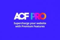 ADVANCED CUSTOM FIELDS (ACF) PRO 5.10.1