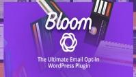 Elegant Themes Bloom 1.3.12