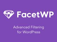 FacetWP – Advanced Filtering Plugin for WordPress 3.8.12