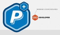 Rocket Genius Gravity Forms Paypal Payments Standard Addon 3.4