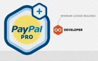 Rocket Genius Gravity Forms Paypal Pro Addon 2.6.1